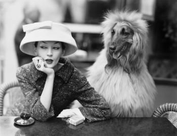 Dovima with Sacha, cloche and suit by Balenciaga, Café des Deux Magots, 1955. The Richard Avedon Foundation.